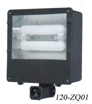 "Large Induction ""Shoebox"" Light For Multiple Applications-120 Watt (120-ZQ01)"