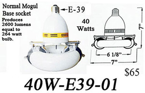 "Induction Mogul Based E39 ""Round"" Light Bulb"